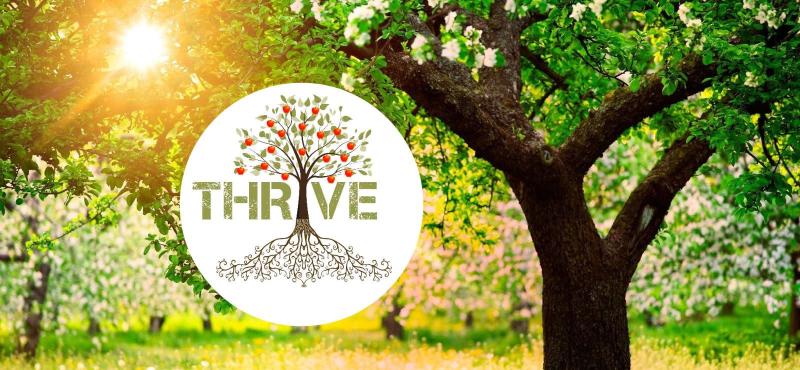 thrive-web